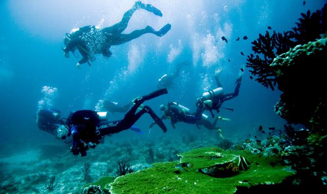 Подводный полет