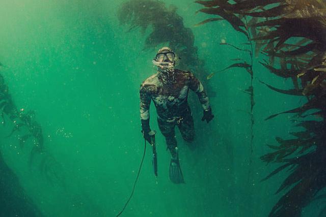 Способы подводной охоты